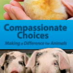 Compassionate Choices leaflet