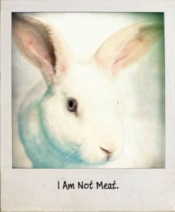 """I am not meat."""