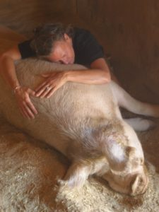 AmyLeo bonds with Jimmy at Farm Sanctuary